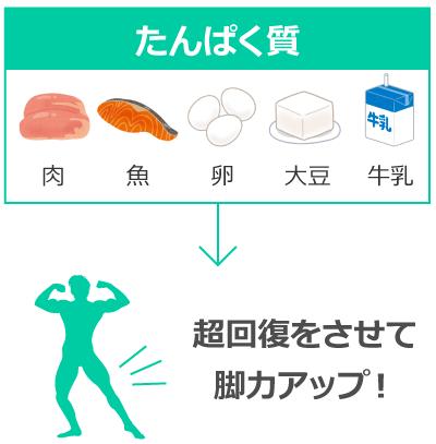 肉や魚、卵に含まれるたんぱく質が、筋肉の超回復を促す
