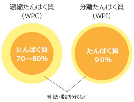 WPCとWPIのたんぱく質濃度の違い