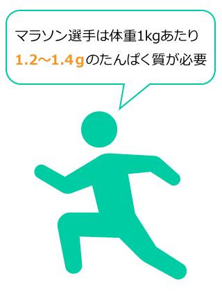 マラソン選手は体重1kgあたり1.2~1.4gのたんぱく質が必要