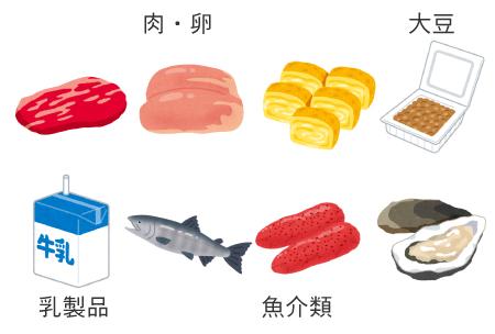 タンパク質・亜鉛の多い食べ物