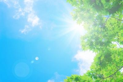 日光と青空